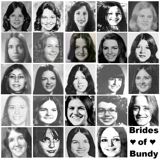 ted bundy victims | theodorerobertcowellnelsonbundy