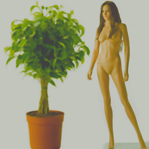 the woman and the potted plant